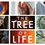 tree of life, movie