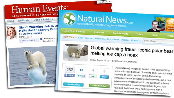 global warming polar bear melting ice cap