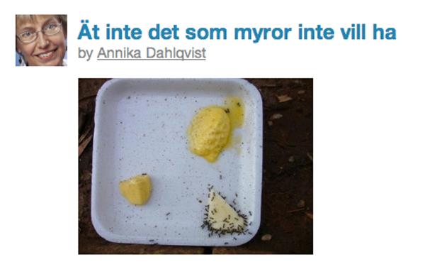 Myror väljer smör istället för margarin
