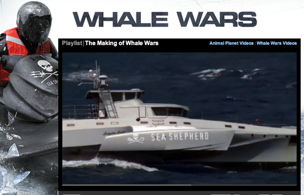 Whale Wars - Foto: Sea Shepherd