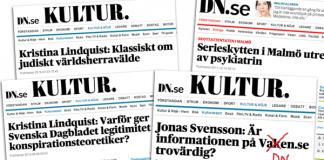 Kristina Lindquist - Kollage med dumpar från Dagens Nyheter