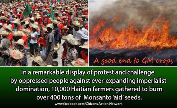 Monsanto Haiti