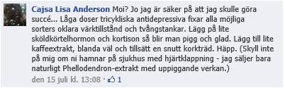 Cajsa Lisa Anderssons borreliamedicin