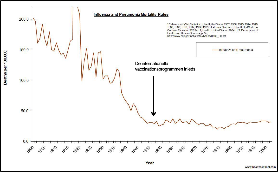 Influensa och lunginflammation i USA 1900-2002