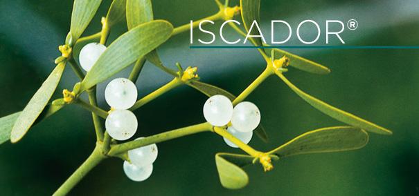 iscador
