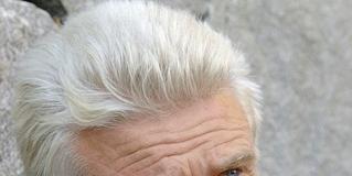 Mattias Gardell - Wikipedia