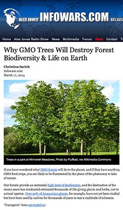 GMO-trees