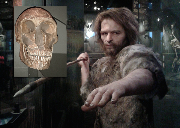 Neanderthal och Homo Sapiens - Foto: Torbjörn Sassersson