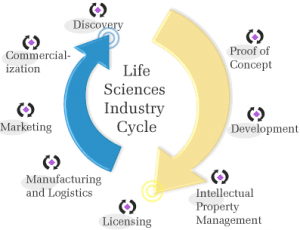 Life Science Industry Cycle