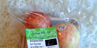 Ekologiska äpplen - Foto: Torbjörn Sassersson