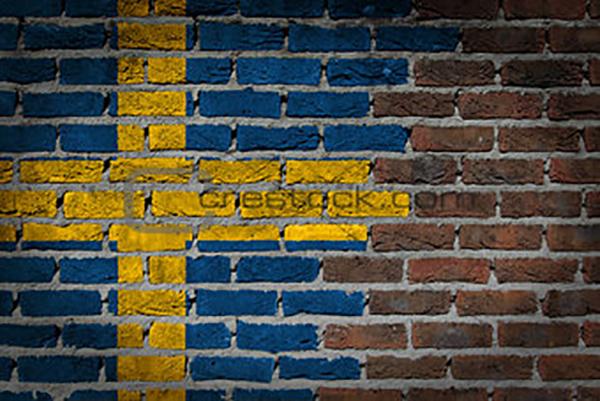"Sveriges anseende sjunker trots myndigheternas ""beskyddarverksamhet"""
