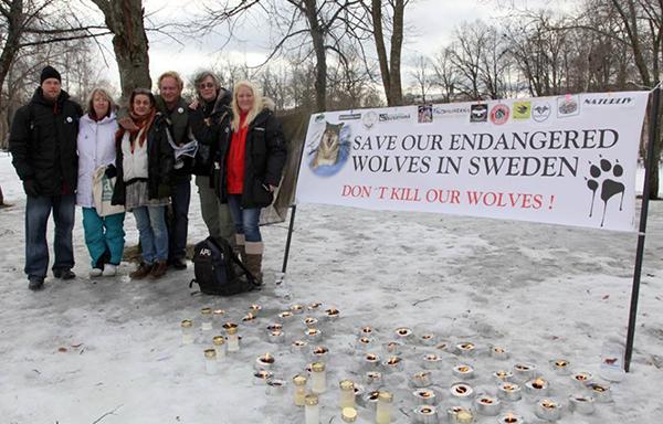 Protester mot vargjägarna och vargjakt - Foto: Kristina Hallin