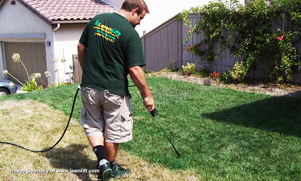Paint the grass - www.lawnlift.com