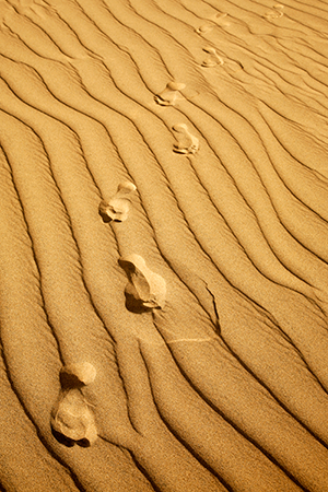 footprints-walking-meditation-Crestock