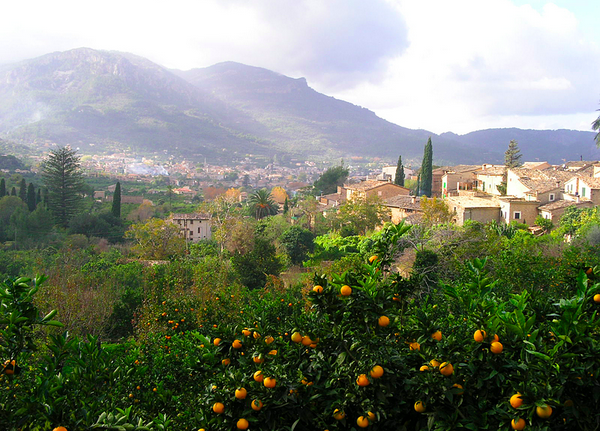 Mallorca (2003) - Foto: M. Riera - Wikimedia Commons