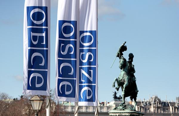 OCSE-OSSE