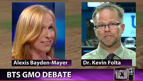 GMO debatt