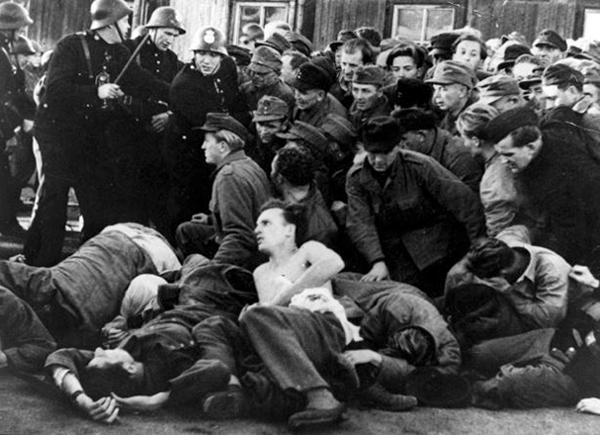 Flykt 1944 Baltikum