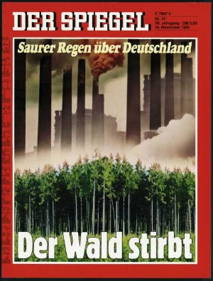 Spiegel-der-Wald-Stirbt