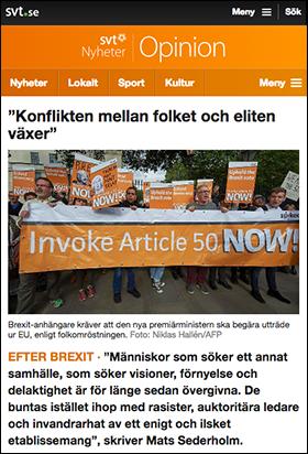 efter Brexit SVT Opinion Sederholm