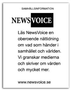 FLYER 2 NewsVoice urklippt
