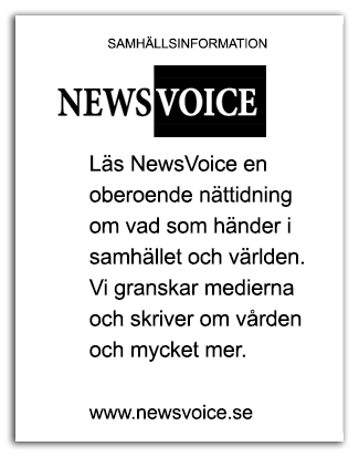 FLYER 2 NewsVoice urklippt