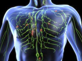 Lymfsystemet - Källa: Healthtap.com