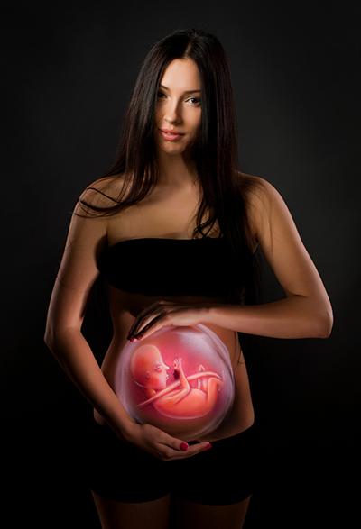 Graviditet,   fortplantning - Foto: Crestock.com