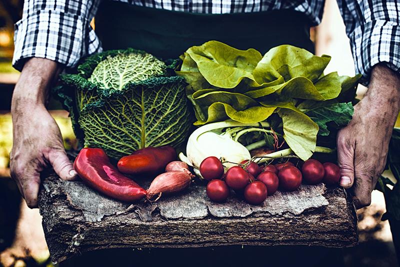 Ekologisk odling - Crestock.com