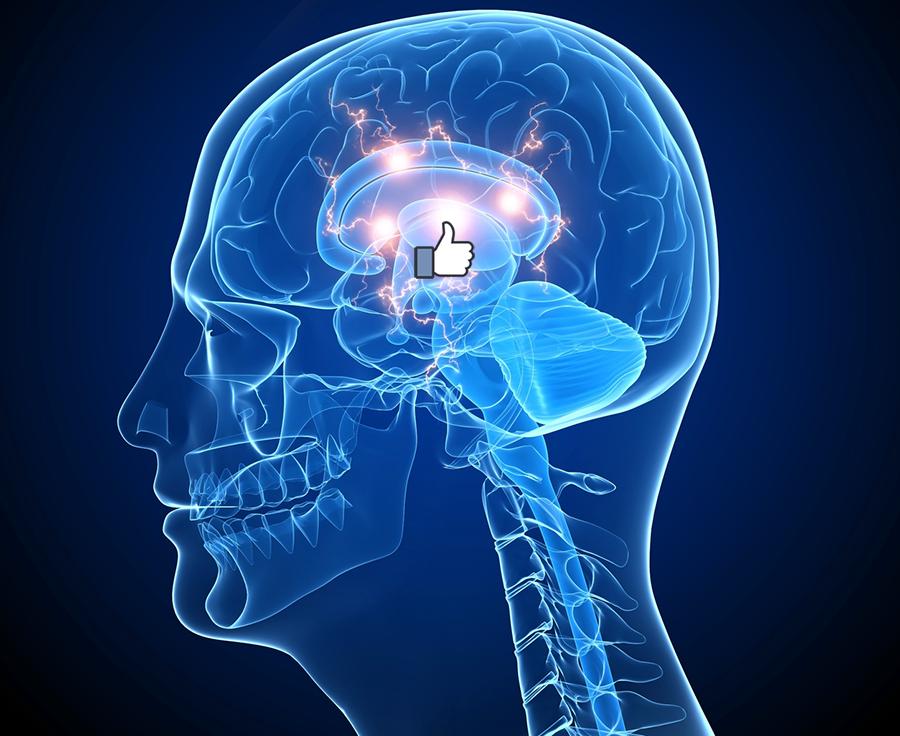 Facebook thumb - Crestock.com