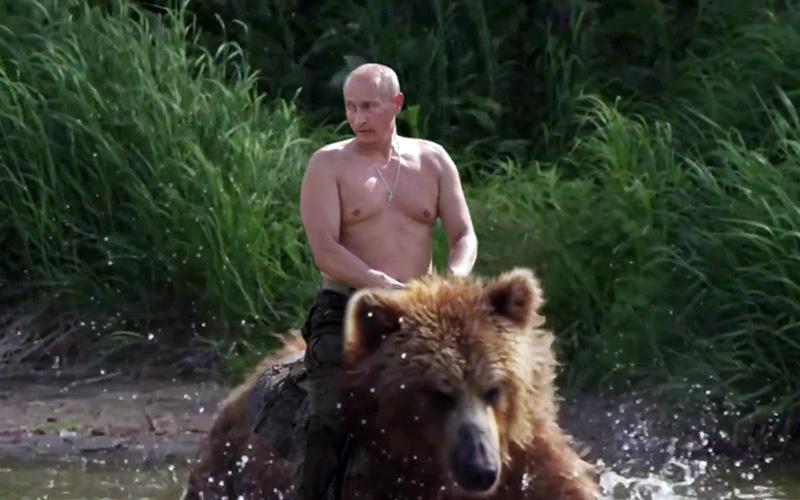 Russofobi - Putin rider en björn