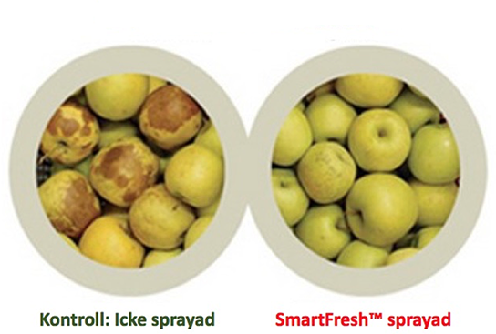 Golden Delicious - Smart Fresh