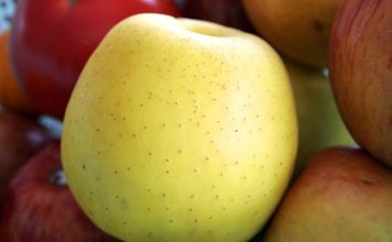 Golden Delicious - Wikimedia Commons, GFDL 1.2