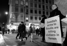 Montage NewsVoice: Swedish Arms in Saudi - Foto: Alisdare Hickson