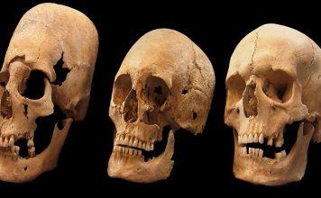 Elongated skulls mystery - Foto: pnas.org
