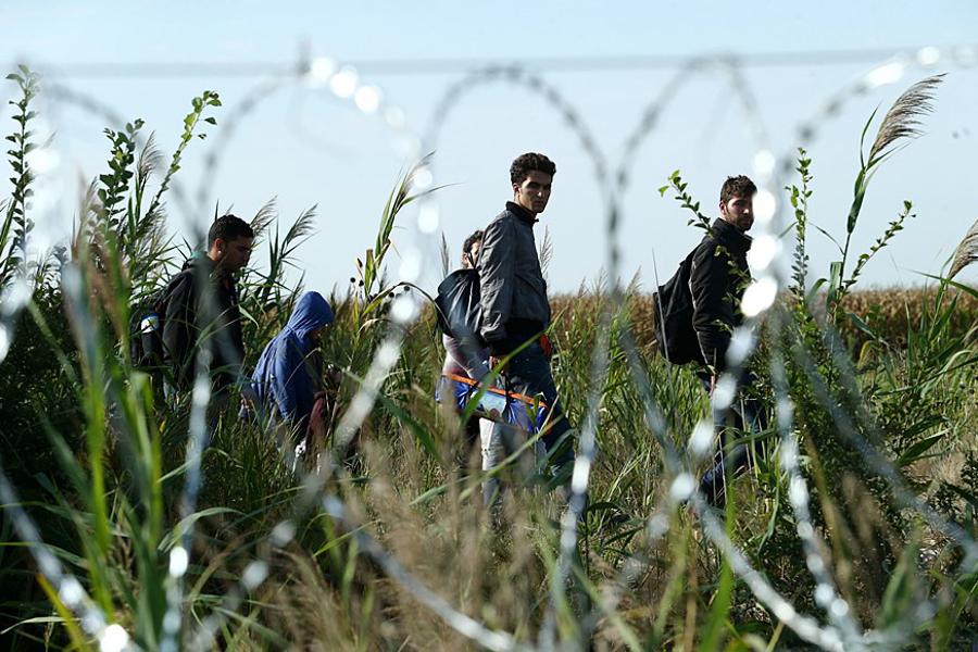 "Migranter i Rumänien längs ""Balkan route"" (2015). Foto: Gémes Sándor, SzomSzed (Szegedma.hu). Licens: CC BY-SA 3.0, Wikimedia Commons"