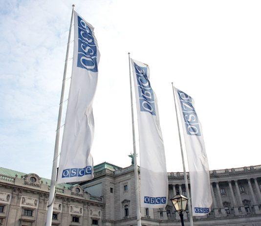OSCE (OSSE) i Hofburg Wien den 9 mars 2010. Foto: Sarah Crozier. Licens: CCA, Osce.org