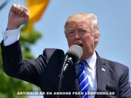 Donald Trump. Foto: Gerd Altmann. Licens: CC0 1.0, Pixabay.com