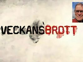 Eric Rönnegård - Veckans Brott - Montage