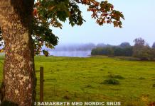 Höstbild - Artikel i samarbete med Nordic Snus