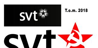 SVT logo 2019 - NewsVoice Grafik