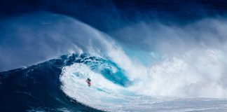 Big Wave Surfer- Pixabay.com-licens
