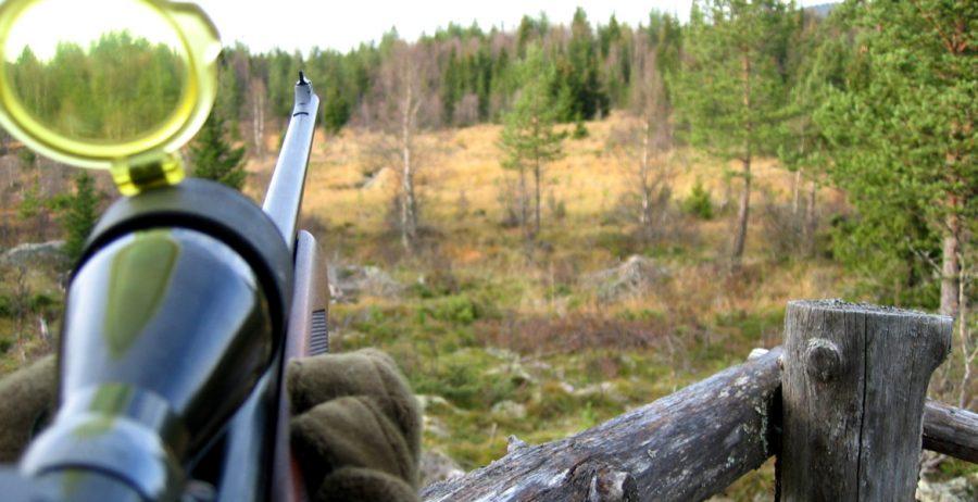Det kommer bli ytterligare svårare och dyrare för jägare och tävlingsskyttar att inneha efter regeringens förslag. Foto: Statskog SF/CC BY-NC 2.0