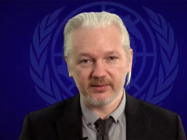 Julian Assange, 2015. Foto: The Wikileaks Channel