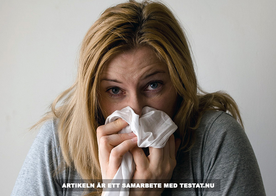 Testat.nu, pollenallergi. Foto: Mojpe. Licens: Pixabay.com (free use)