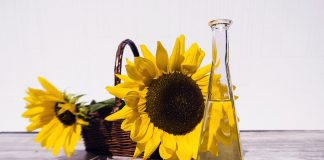 Sunflower oil solrosolja. Foto: Bruno Glatsch. Licens: Pixabay.com