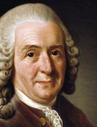 Carl von Linné. Målning: Alexander Roslin, 1775. Licens: Public domain, Wikimedia Commons