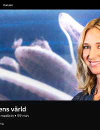 Victoria Dyring. Vetenskapens Värld, SVT, hemsida 26 dec 2019