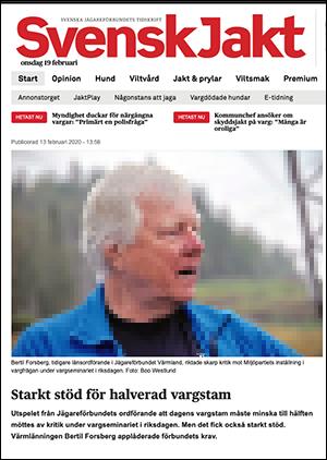"""Svensk Jakt och i skärmbild BertilForsberg. Foto: Boo Westlund. """"Starkt stöd för halverad vargstam"""""""