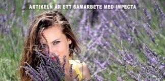 Lavendel och andra läkande växter. Foto: Adina Voicu. Licens: Pixabay.com